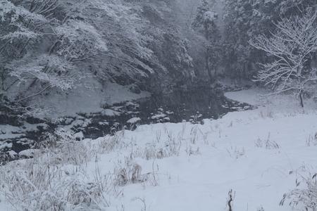 雪に覆われた川岸 写真素材