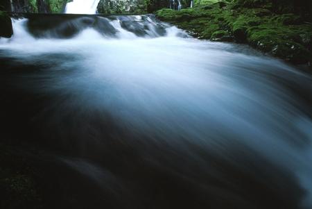 水を入れること