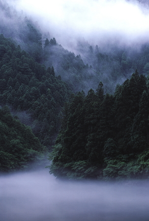 雨の渓谷 写真素材 - 76194361