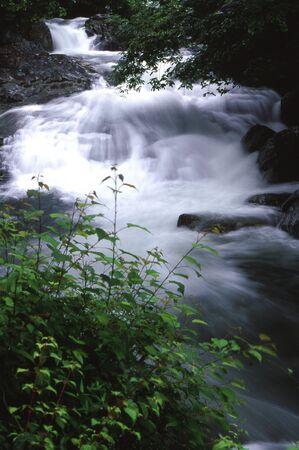 福地渓谷 写真素材