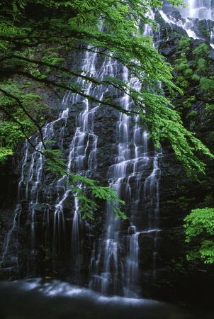 Ryuusougataki 写真素材 - 76395161