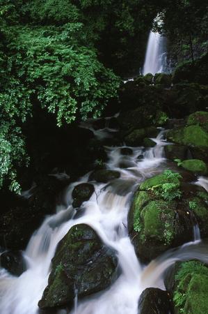 Shiraitonotaki 写真素材