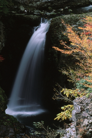 Waterfall and colored leaves 写真素材