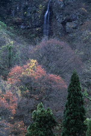 晩秋の滝 写真素材 - 76396325