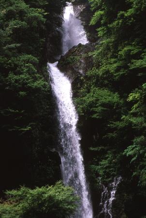 Miyanotaki