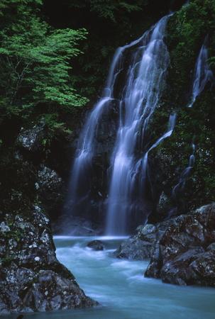 Shinoharanotaki