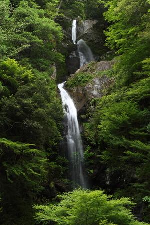 Miyanotaki 写真素材 - 76396359