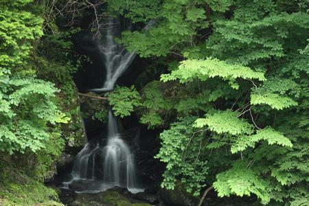滝 写真素材 - 76396358
