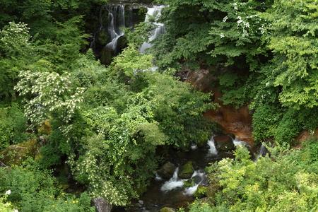 夏の渓流 写真素材 - 76396366