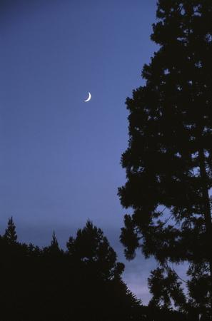 Moon of dusk