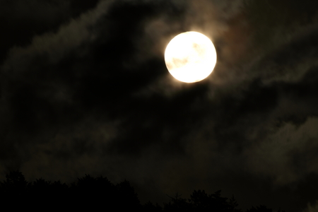 満月 写真素材 - 76396391