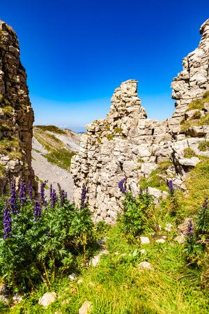 view of the hoher ifen peak Stock Photo