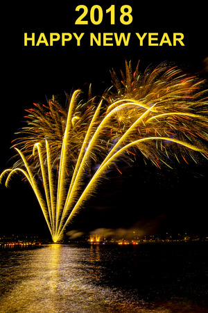 antecedents: fantastic firework on the sea on silvester Stock Photo