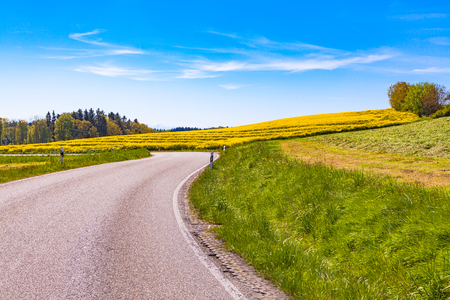 view of a rapeseed field and a highway Stock Photo