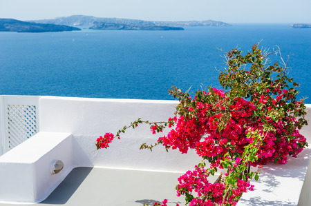 Terrace with red flowers. Santorini island, Greece. Beautiful landscape with sea view.