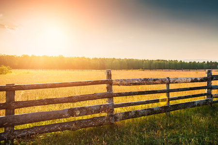 pasture fence: Rural nature at sunset. Beautiful summer landscape with field and forest