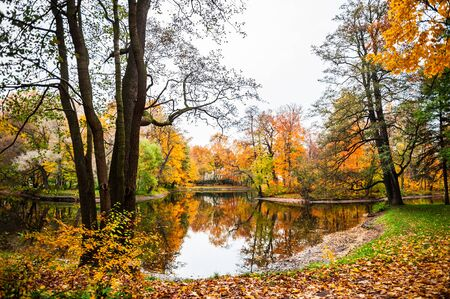 Autumn landscape. Fall scene. Beautiful yellow trees on the shore of the pond in the park Stock Photo