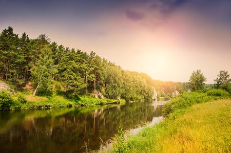 sol: Rio da floresta no por do sol. Paisagem bonita do ver