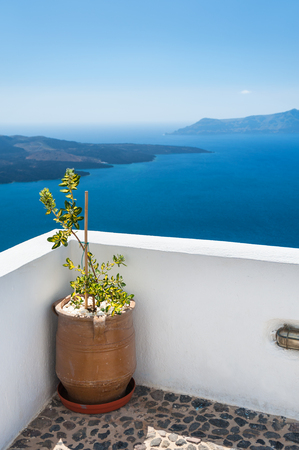 town idyll: Flower on the terrace. Beautiful landscape with sea view. White architecture on Santorini island, Greece. Selective focus