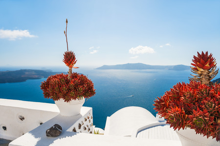 Terrace with flowers overlooking the sea. Santorini island, Greece. Beautiful landscape with sea view.