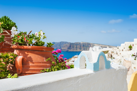 jardines con flores: arquitectura blanca en la isla de Santorini, Grecia. enfoque selectivo