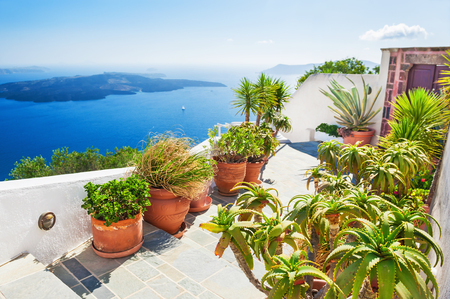 Terrace with flowers. Santorini island, Greece. Beautiful landscape with sea view. Stock Photo