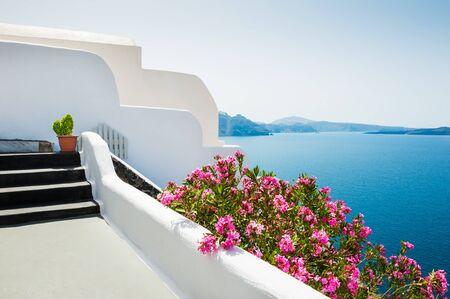 jardines con flores: White architecture on Santorini island, Greece. Beautiful landscape with sea view