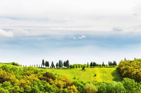 glades: Green fields and blue sky. Beautiful Tuscany landscape, Italy Stock Photo