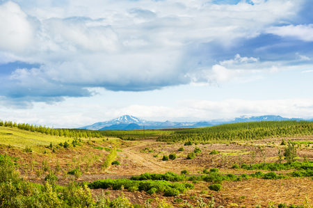 hekla: Countryside landscape and view of the Hekla volcano in Iceland.