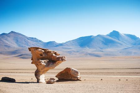 avaroa: Stone tree on the plateau Altiplano, Bolivia