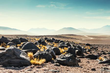 avaroa: High-altitude desert landscapes on the plateau Altiplano, Bolivia