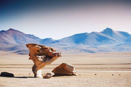avaroa: Stone tree Arbol de Piedra on the plateau Altiplano, Bolivia Stock Photo
