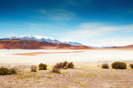 avaroa: High-altitude lagoon and volcano on the plateau Altiplano, Bolivia Stock Photo