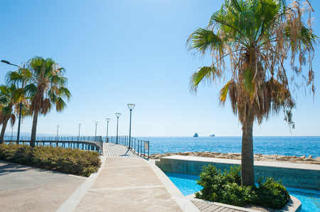 Beautiful promenade with palms and sea view in Limassol, Cyprus