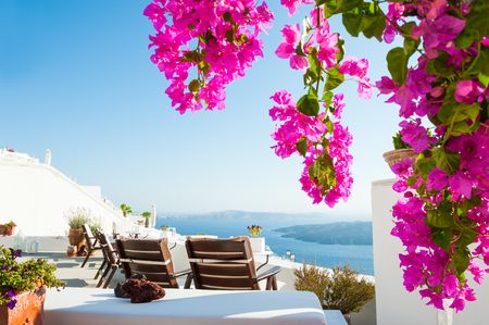 Beautiful terrace with flowers, sea view. Santorini island, Greece.
