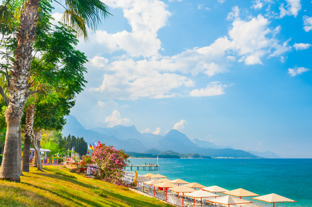 Beautiful beach with green trees in Kemer, Turkey. Summer landscape, travel and vacation Stok Fotoğraf - 102008849