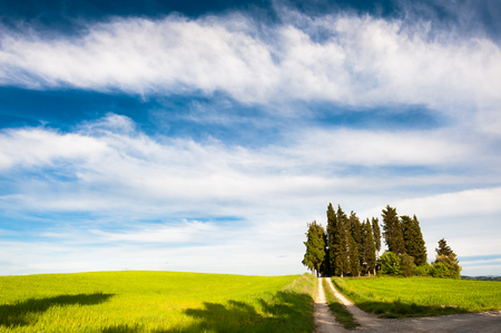 Green fields and the blue sky in Tuscany, Italy. Beautiful summer landscape