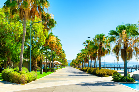 Beautiful sea promenade with palms in Limassol, Cyprus. Summer landscape. Famous travel destination