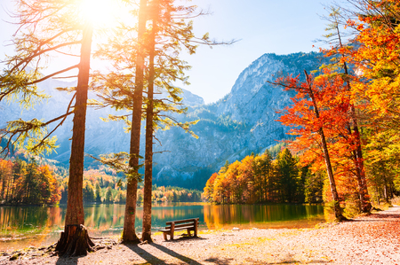 Autumn trees on the shore of Hinterer Langbathsee lake in Alps mountains, Austria. Beautiful autumn landscape