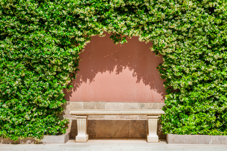 Stone bench under the green plants in the park. Summer nature background Stock Photo