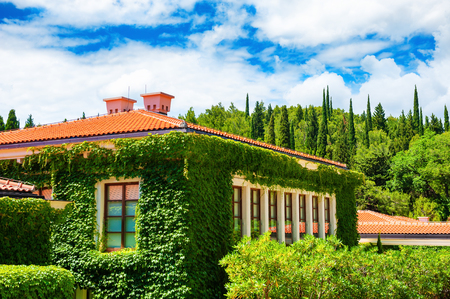 House with decorative green plants in the nature. Summer landscape in Montenegro Stock Photo