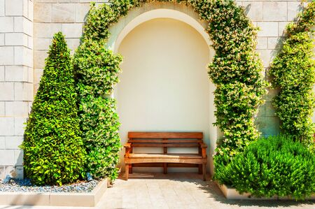 Wooden bench under the green plants in the park. Summer nature background