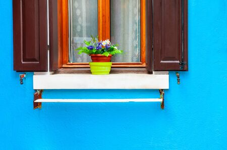 Window with flowers on the blue wall. Colorful architecture in Burano island, Venice, Italy.