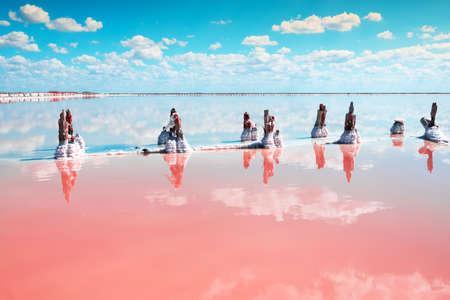 Pink salt lake and the blue sky with clouds. Sasyk-Sivash pink salt lake in Crimea. Summer landscape.