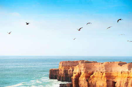 Rocks on the shore of Atlantic ocean and seagulls soaring in the sky in Algarve, Portugal. Beautiful summer seascape, famous travel destination