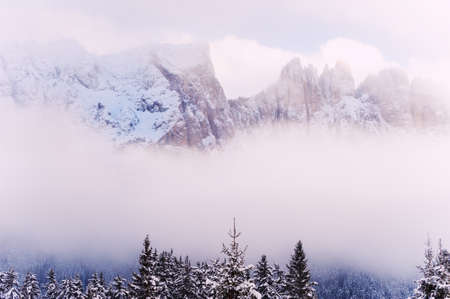 Snow-covered trees in winter mountains in misty day. Dolomite Alps, northern Italy. Beautiful winter landscape Reklamní fotografie