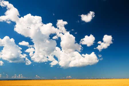 Blue sky with white clouds over the fields. Beautiful summer landscape. Crimea peninsula.