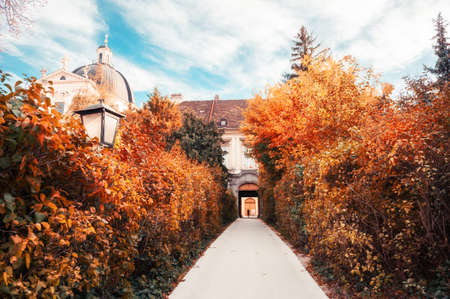 Autumn park in Vienna, Austria. Beautiful alley with yellow trees and old architecture