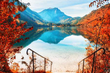 Yellow autumn trees on the shore of lake in Alps, Austria. Vorderer Langbathsee lake. Beautiful autumn landscape Reklamní fotografie