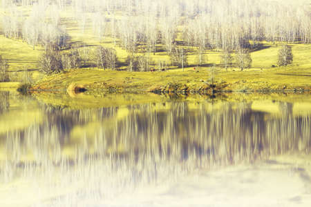 Trees on the shore of lake in early spring. Hills with trees are reflected in the water surface. South Ural, Russia Zdjęcie Seryjne